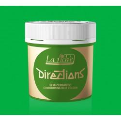 Зеленая краска для волос - La Riche DIRECTIONS - Spring green